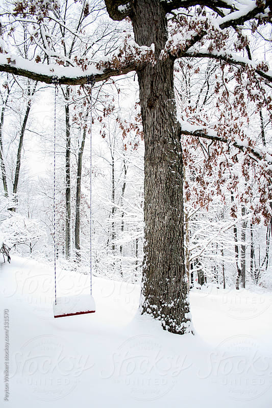 Snowy tree swing by Peyton Weikert for Stocksy United