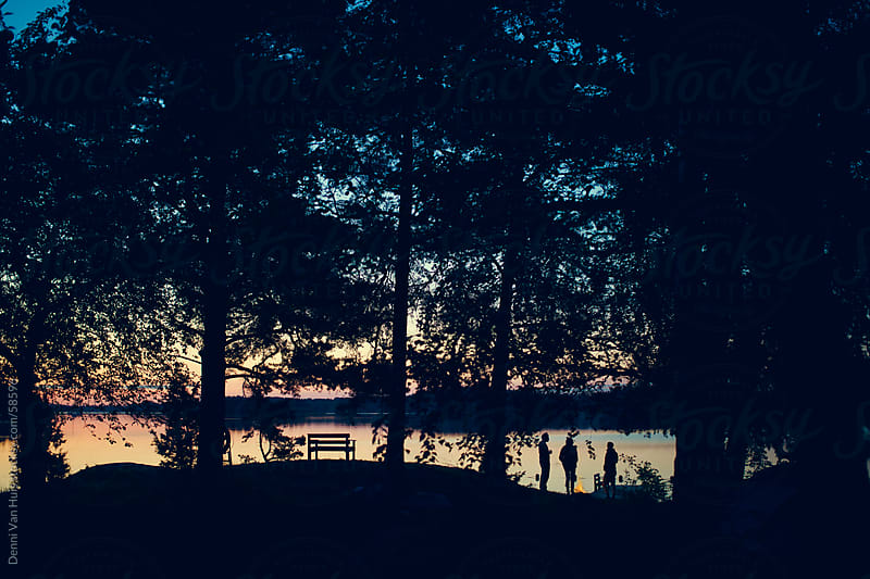 A group of friends enjoying the sunset around a lakeside campfire by Denni Van Huis for Stocksy United