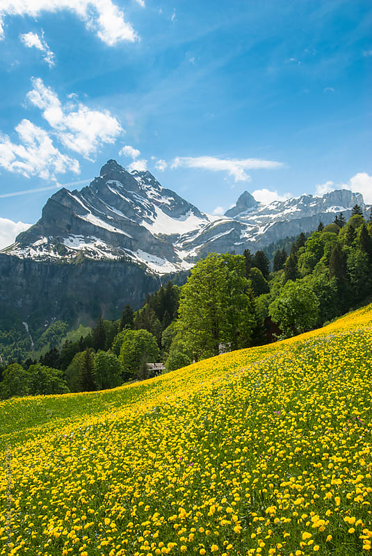 Braunwald in spring by Peter Wey for Stocksy United