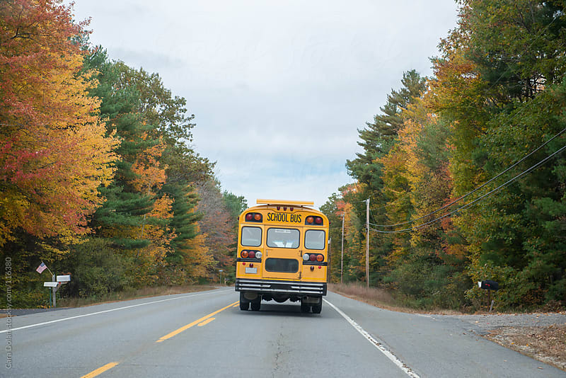 School bus drives down a country road in autumn by Cara Dolan for Stocksy United