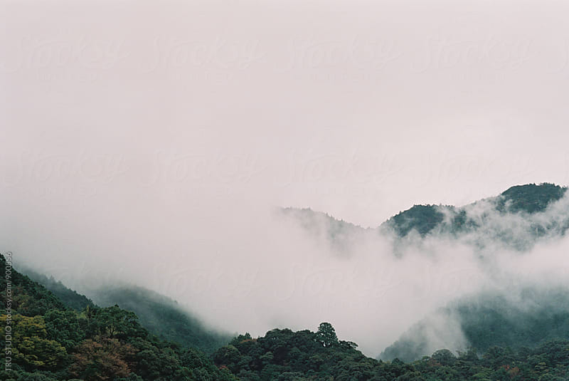 Foggy Mountains in Japan Film by TRU STUDIO for Stocksy United