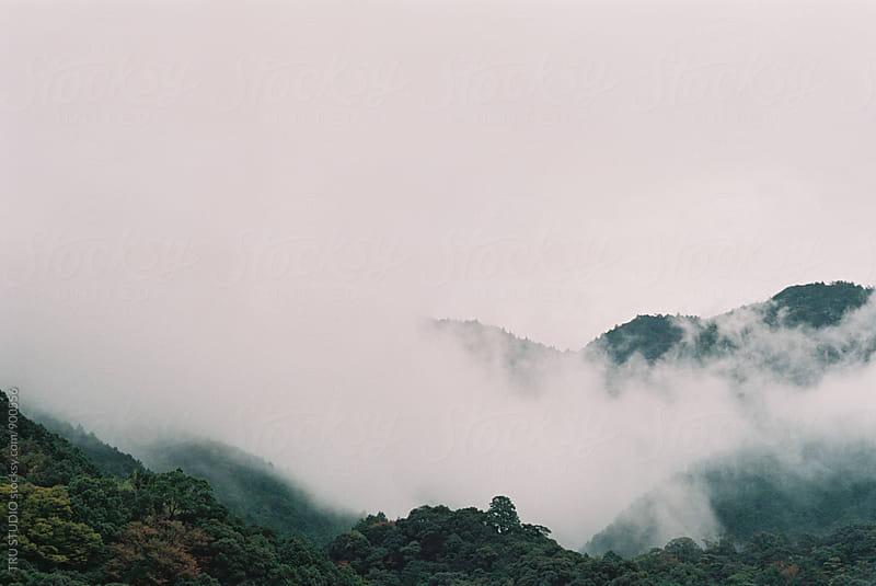 Foggy Mountains in Japan Film by TRU STUDIO for Stocksy United