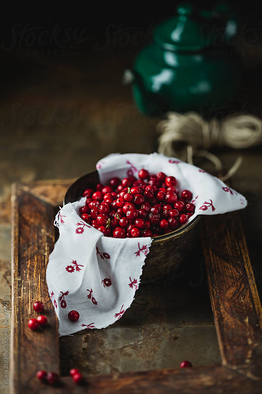 Wild cranberries by Tatjana Ristanic for Stocksy United
