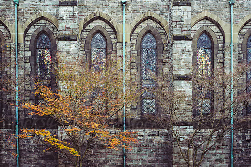 Trees by a church wall by Richard Brown for Stocksy United