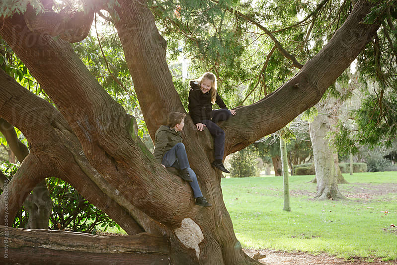 Brother and sister smiling at each other while sitting in a tree by Kirsty Begg for Stocksy United