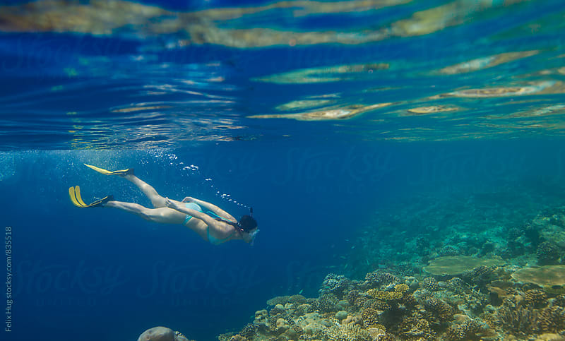 Woman snorkelling in the Maldives by Felix Hug for Stocksy United