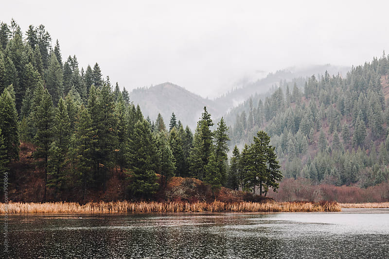 Freeman Lake, Idaho on a rainy morning.  by Justin Mullet for Stocksy United