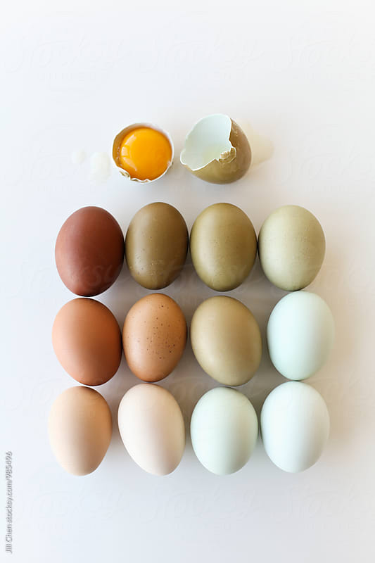 Colourful Assortment of Eggs by Jill Chen for Stocksy United