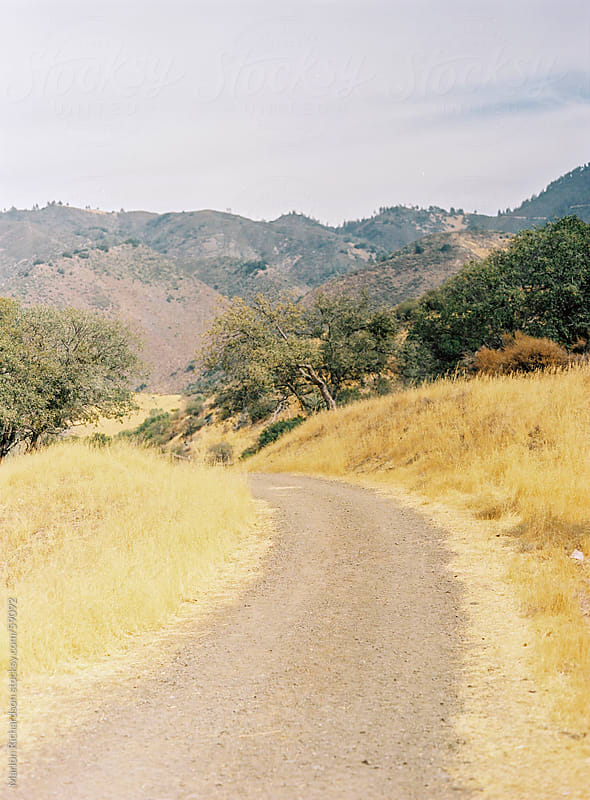 Dusty road on a hillside by Marlon Richardson for Stocksy United
