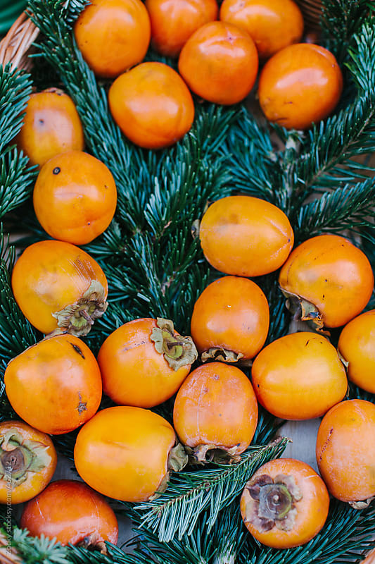 Persimmons by Zocky for Stocksy United