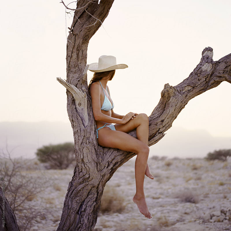 Woman sitting in a tree in the desert by Hugh Sitton for Stocksy United