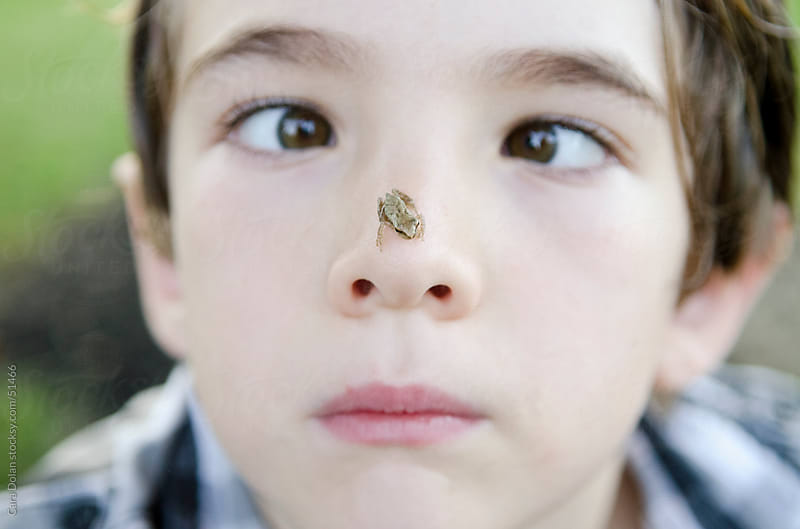 Boy goes cross eyed as he examines a small frog on his nose by Cara Dolan for Stocksy United