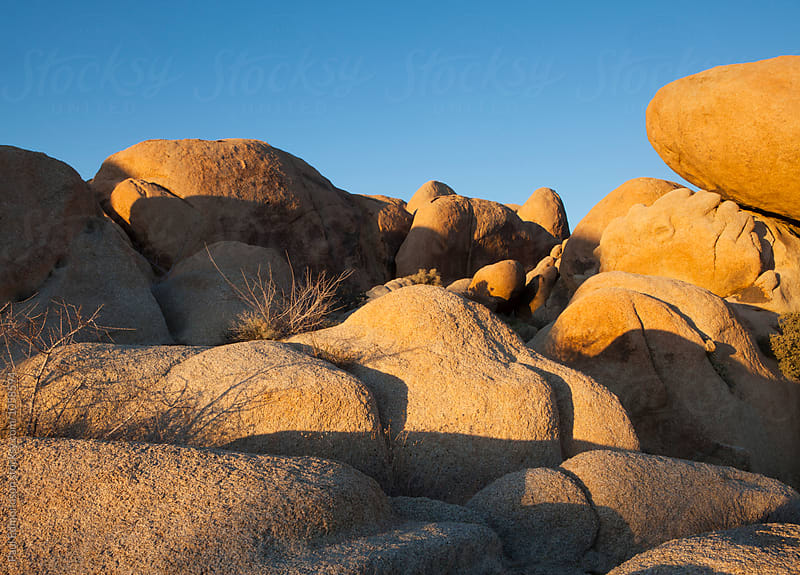 Rock formations at dawn, Joshua Tree National Park, CA, USA by Paul Edmondson for Stocksy United