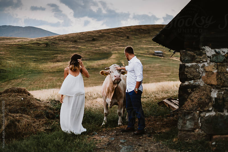 Young couple in the country and a cow by Natasa Kukic for Stocksy United