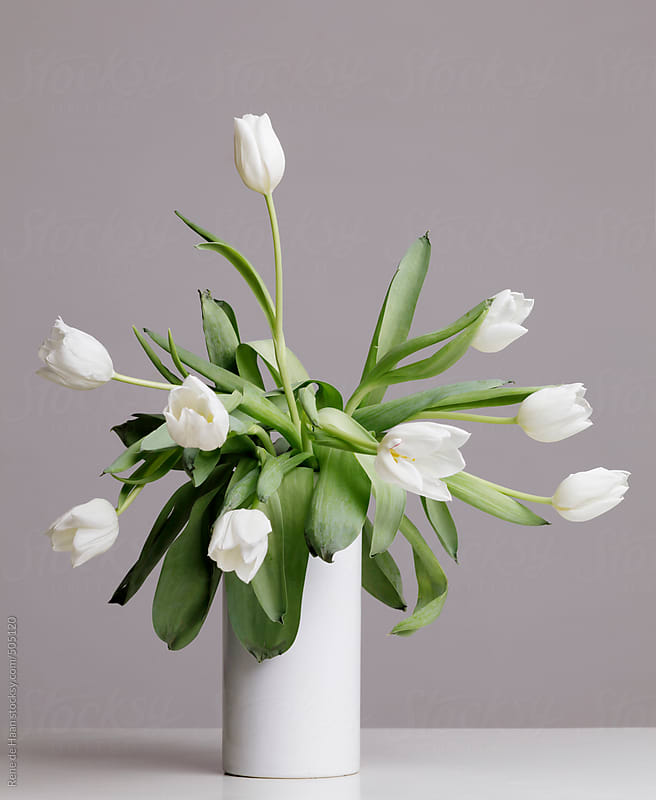 vase with white tulips by Rene de Haan for Stocksy United