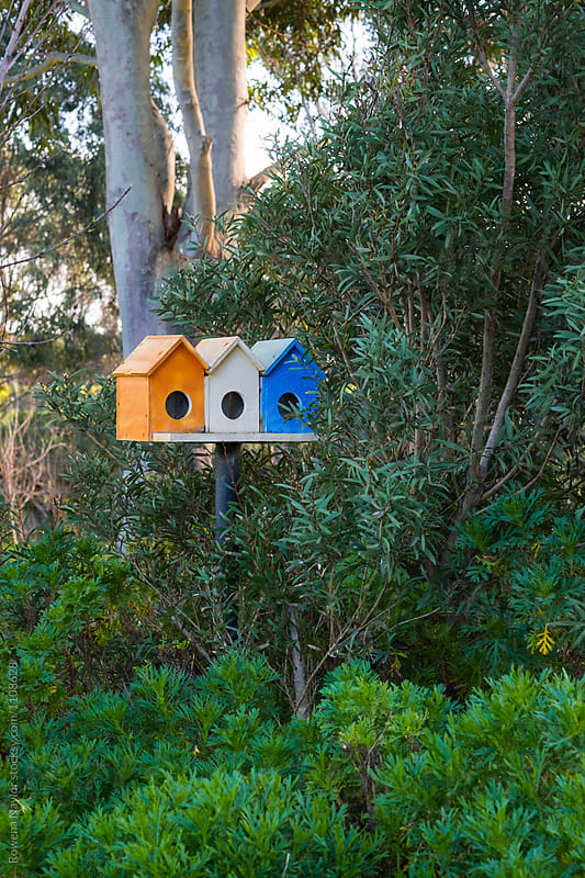 Trio of brightly painted bird feeders in garden