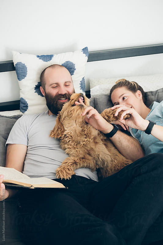 Young Couple Lying On Bed Reading Book With Labradoodle Puppy by Luke Mattson for Stocksy United