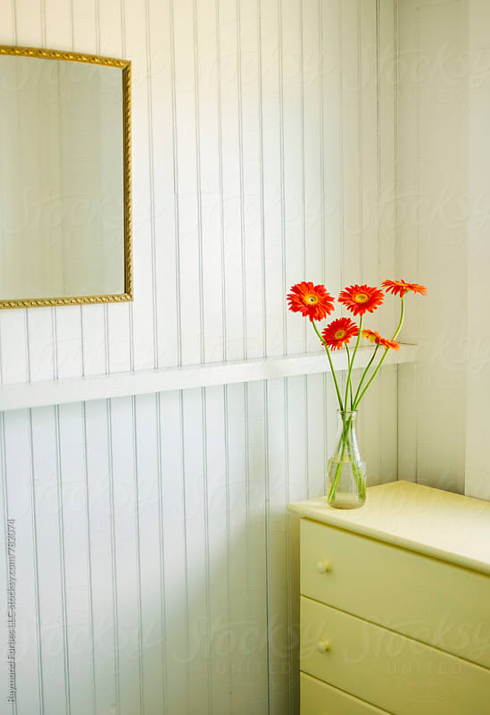 Gerber Daisies at Summer Cottage by Raymond Forbes LLC for Stocksy United