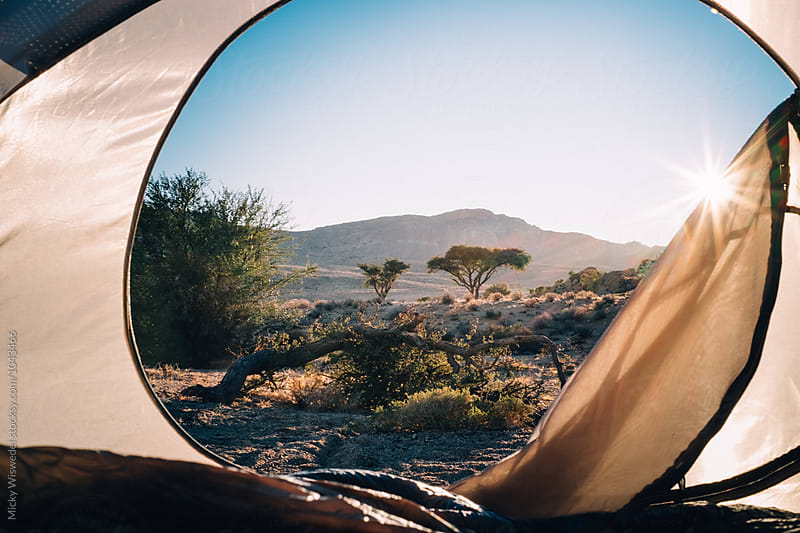 View from inside a tent out to a sunrise in the African bush by Micky Wiswedel for Stocksy United