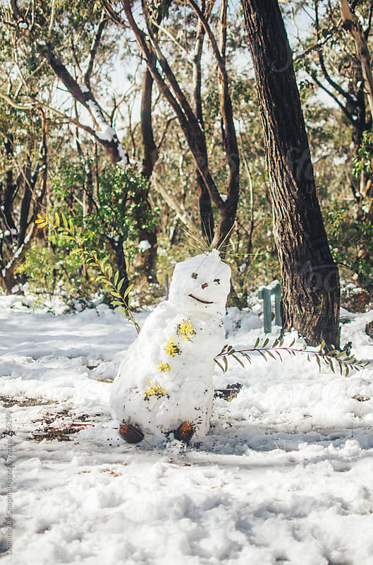 Australian Snow Man by Dominique Chapman for Stocksy United