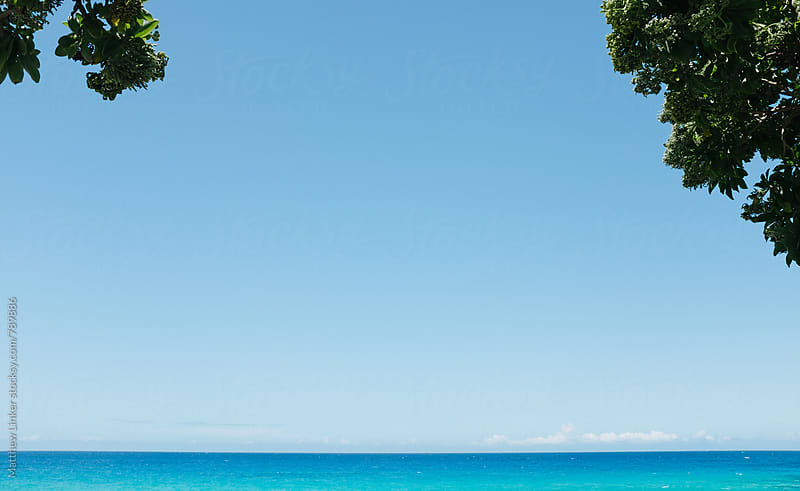 tropical hawaii vista by Matthew Linker for Stocksy United