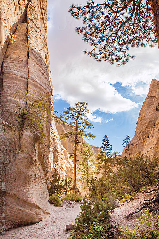 Hiking Trail in Tent Rocks National Monument, New Mexico by Matthew Smith for Stocksy United