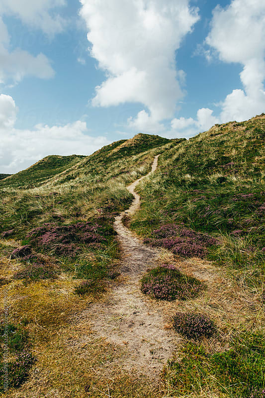 Path in Grassy Dune Landscape on Sylt Island (Germany) by Julien L. Balmer for Stocksy United