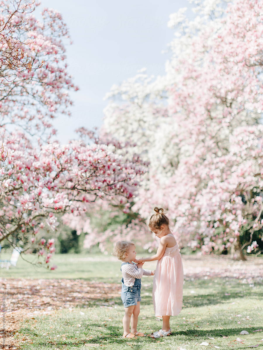 Two Little Girls Playing Outside Beneath Flowering Trees In Spring