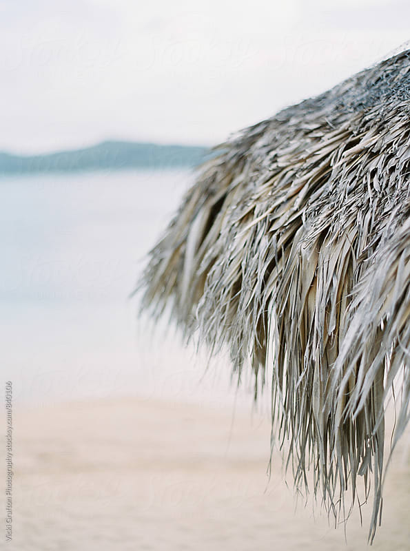 Thatched palapa on the beach  by Vicki Grafton Photography for Stocksy United