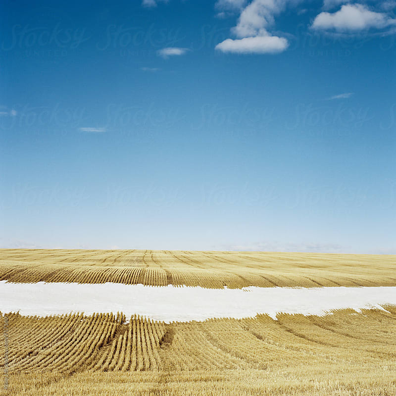 Farm field partially covered with snow by Riley J.B. for Stocksy United