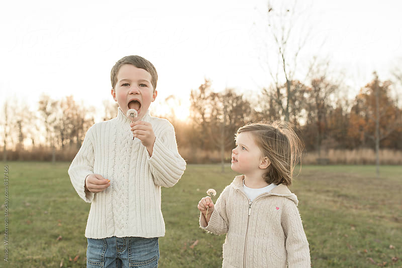 Younger Sister Watches Brother As He Blows A Dandelion by Alison Winterroth for Stocksy United