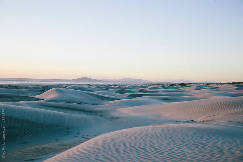 Empty rolling sand dunes disappear into the distance with the ocean in the background by Gary Parker for Stocksy United