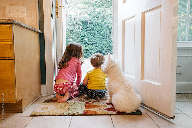Two children and a dog looking outside through a glass door by Jakob for Stocksy United