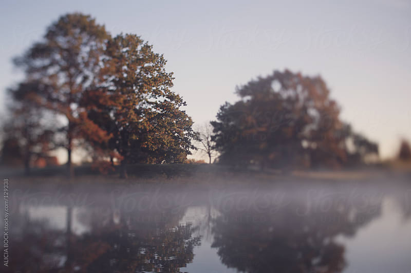 The Lake At Sunrise by ALICIA BOCK for Stocksy United