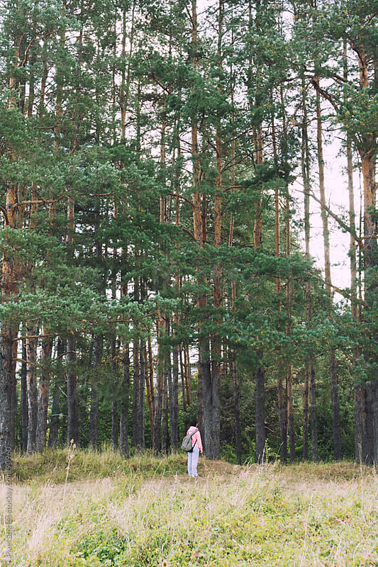 Woman standing next to tall trees by Pixel Stories for Stocksy United