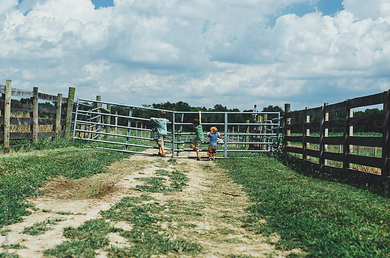 Three Boys on a Gate on a Farm by Ali Deck for Stocksy United
