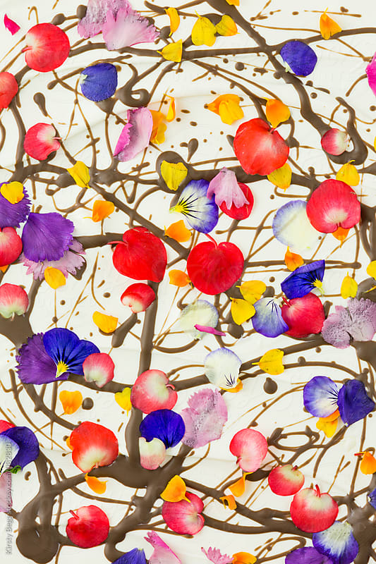 Chocolate candy with edible flowers by Kirsty Begg for Stocksy United