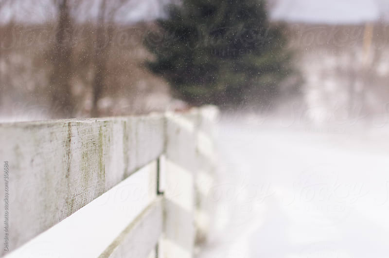 white fence in the windblown snow by Deirdre Malfatto for Stocksy United