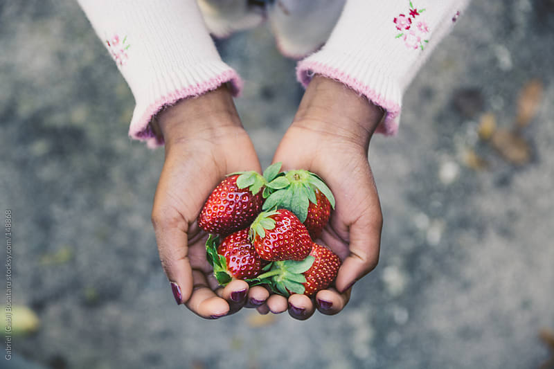 Hands With Strawberries by Gabriel (Gabi) Bucataru for Stocksy United