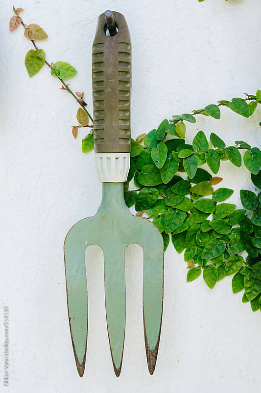 gardening tools on the wall by Gillian Vann for Stocksy United