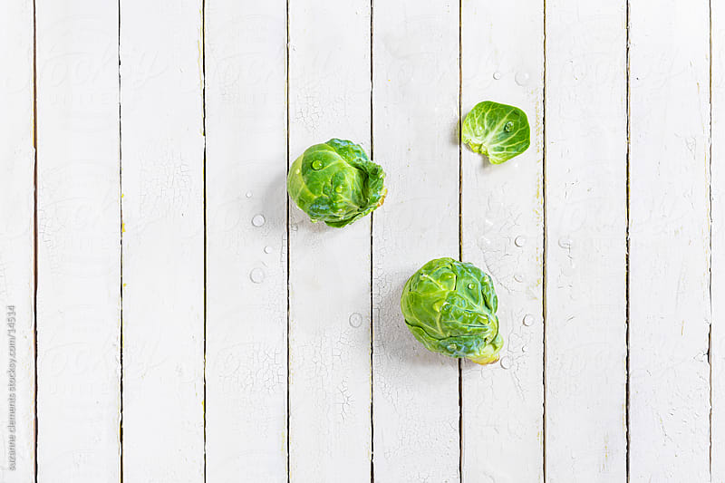 Fresh Organic Brussels Sprouts Study by suzanne clements for Stocksy United