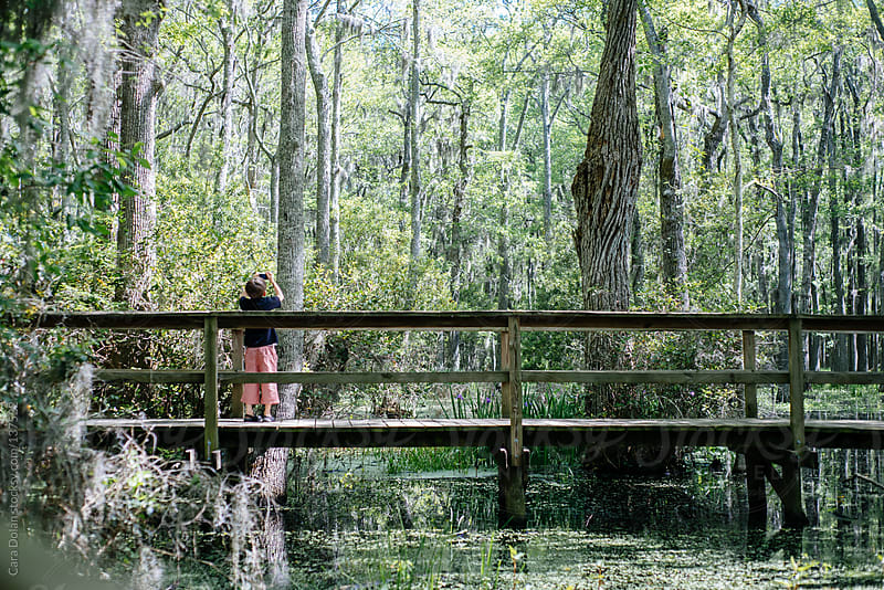 Boy with camera takes picture while walking on a boardwalk through a swamp by Cara Dolan for Stocksy United