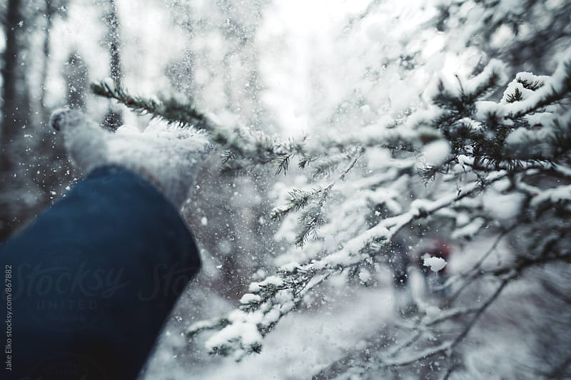 Playing in The Snow by Jake Elko for Stocksy United