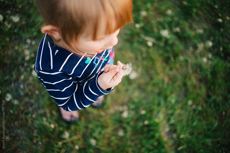 Overhead image of a toddler girl getting ready to blow a dandelion weed. by Jessica Byrum for Stocksy United