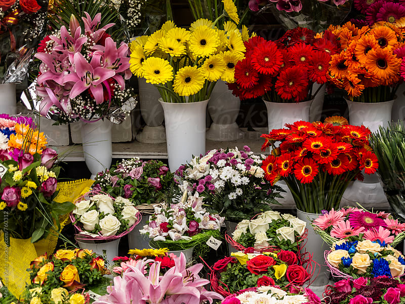 Colorful flowers at the flower market in Tallinn, Estonia by Melanie Kintz for Stocksy United