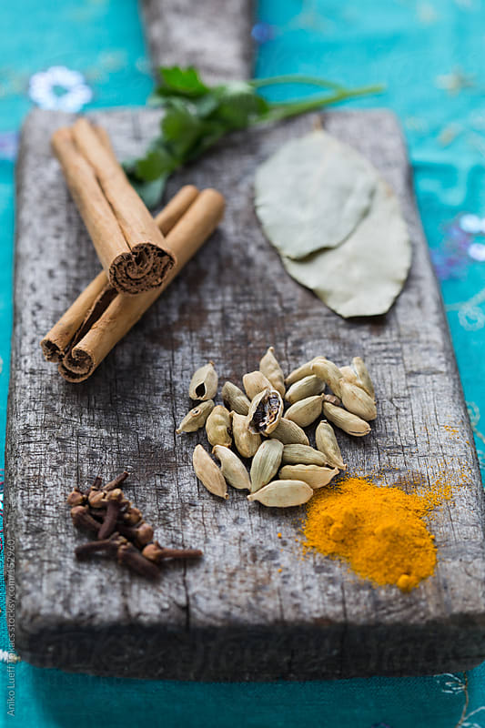 Spices of the curry by Aniko Lueff Takacs for Stocksy United