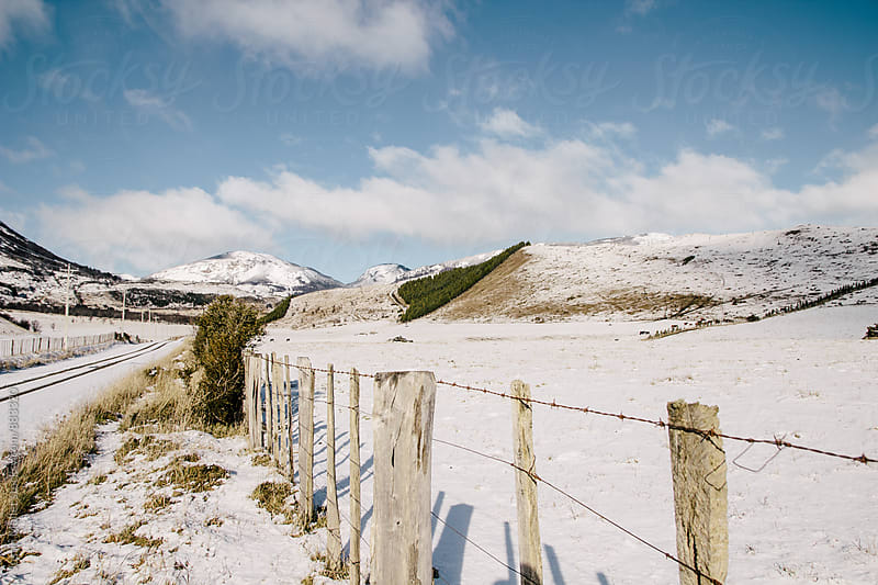 A fence row surrounded by snow covered pasture land in Patgonia by Justin Mullet for Stocksy United