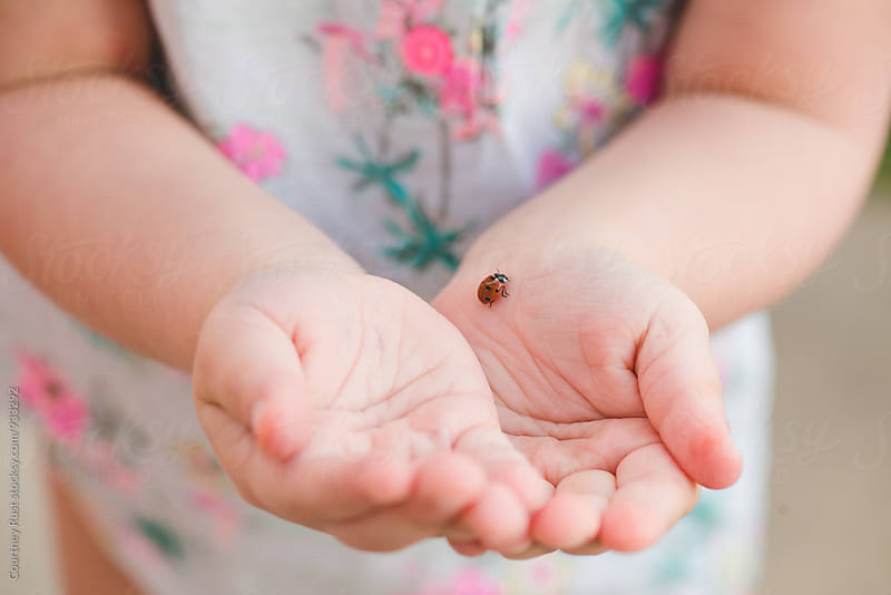 Child with a ladybug by Courtney Rust for Stocksy United