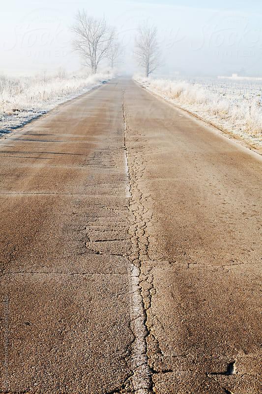 Old Countryside Road In Winter Early Morning by Borislav Zhuykov for Stocksy United