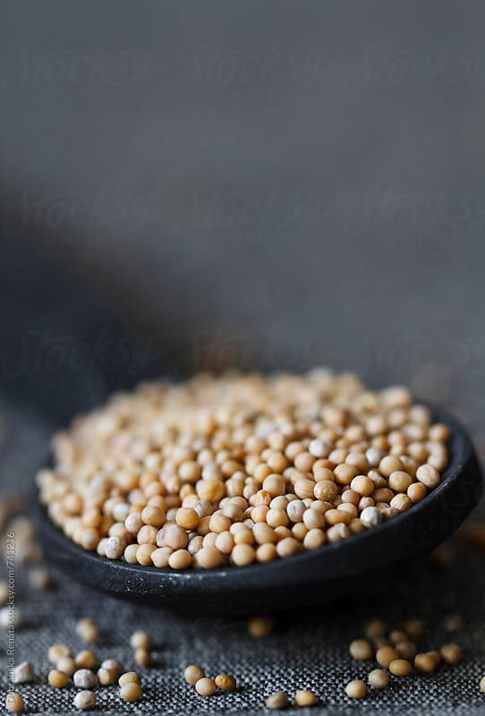 White mustard seeds by Dobránska Renáta for Stocksy United